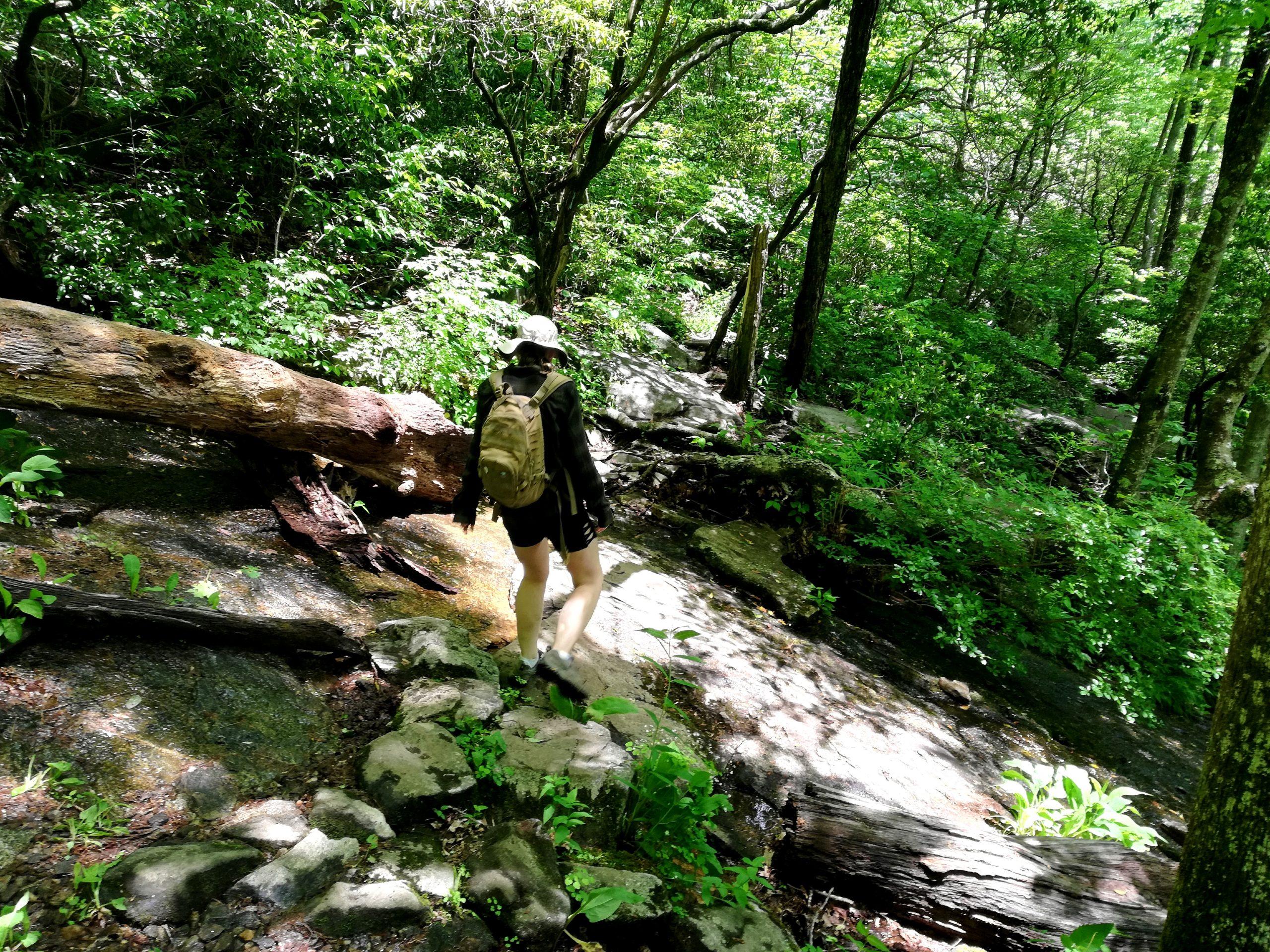 Blood Mountain Georgia Appalachian Trail