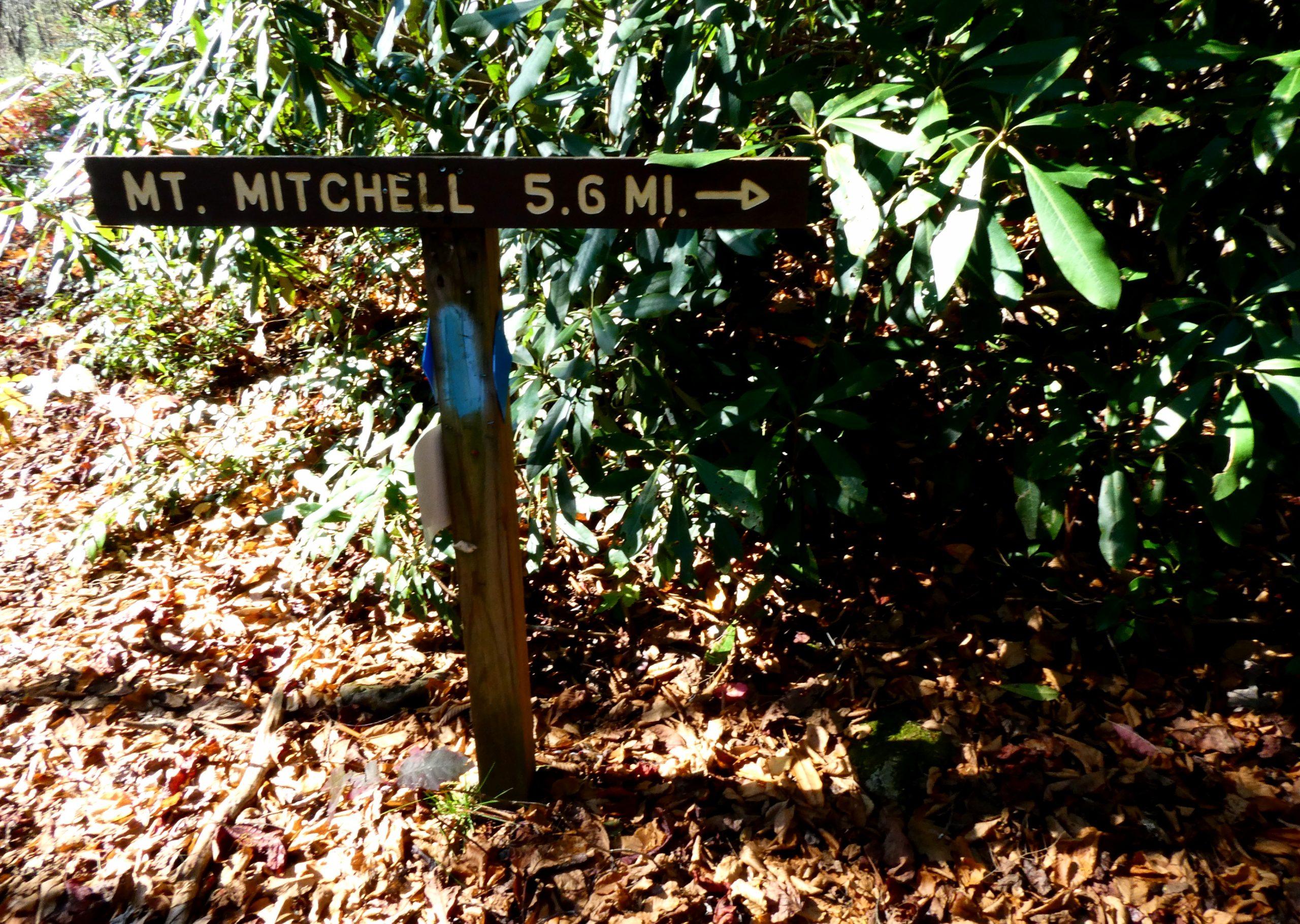 Mount Mitchell Hiking Phots