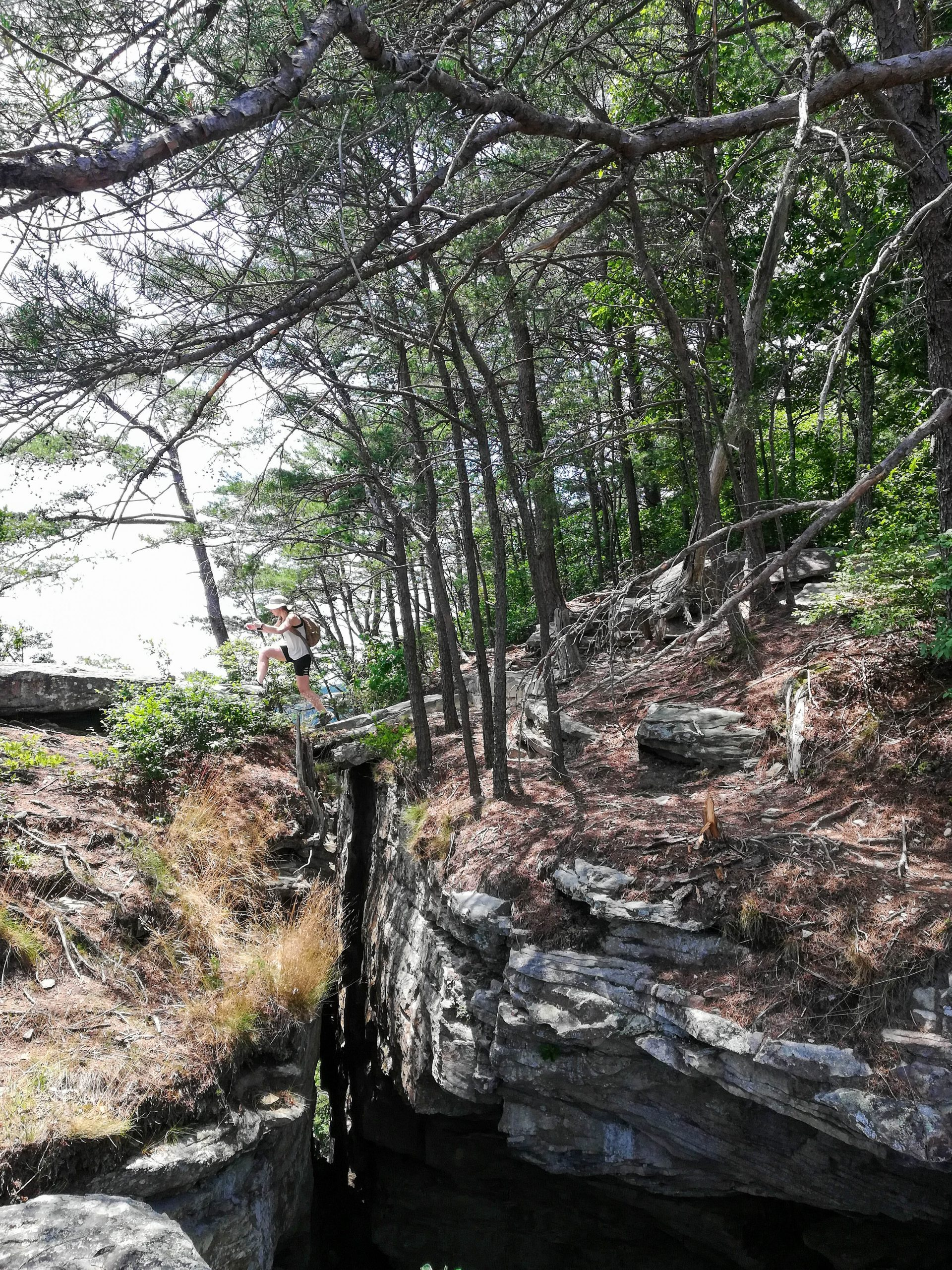 Savage Gulf Hiking Trails Stone Door Big Creek
