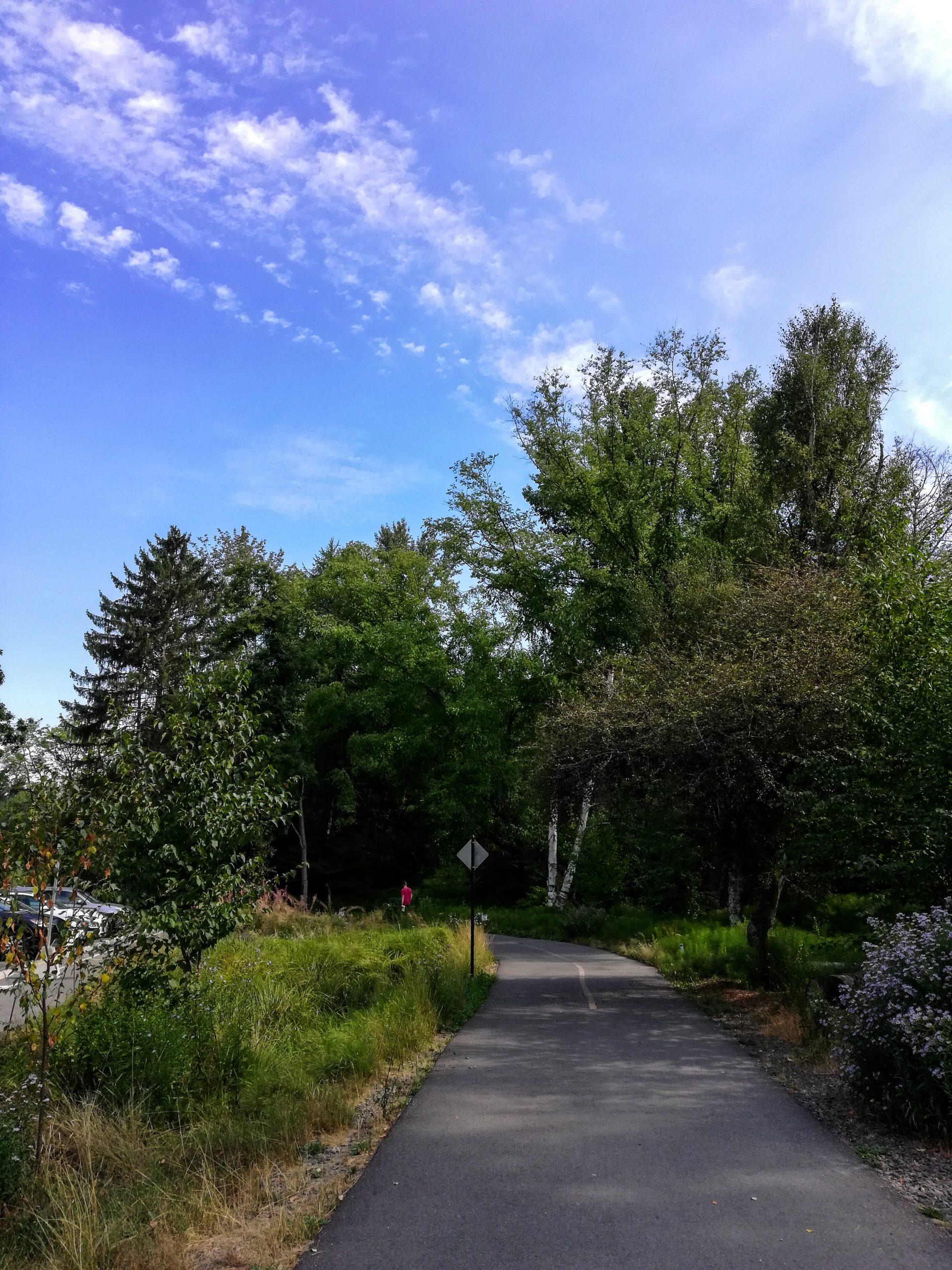 Washington Park Arboretum Loop Trail