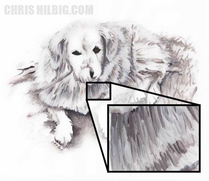 An illustration of a dog done using the white blender marker, includes zoomed in detail
