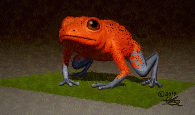 A strawberry dart frog modeled and colored in ZBrush. Finished in Photoshop and Corel Painter.