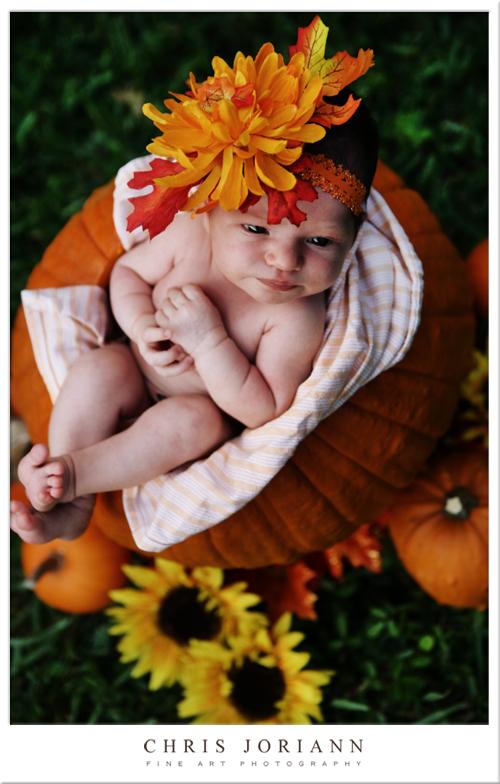 in pumpkin