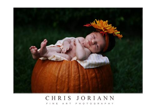 sleeping in pumpkin