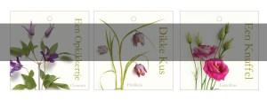 Ontwerpburo Chris Kleinsman Bloemenkaartjes Puur Bloemen