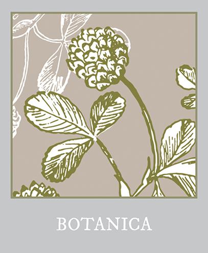 polaroid botanica versie 3