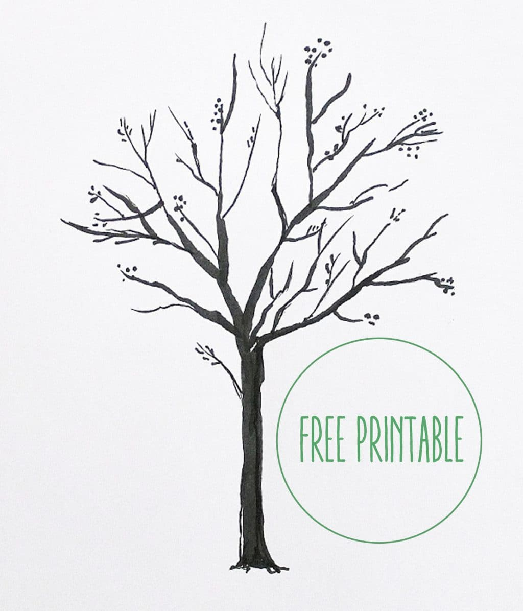 Free Printable Blank Family Tree