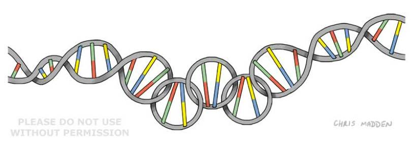gene-doping-olympics-cartoon