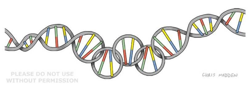 gene-doping-olympics-cartoon