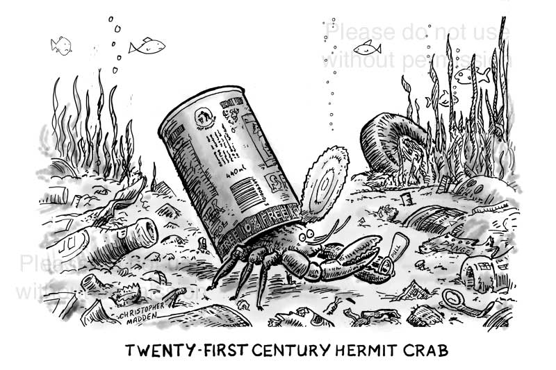 Hermit crab with tin can as a shell - cartoon
