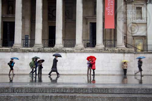 Umbrellas outside the National Gallery in the rain