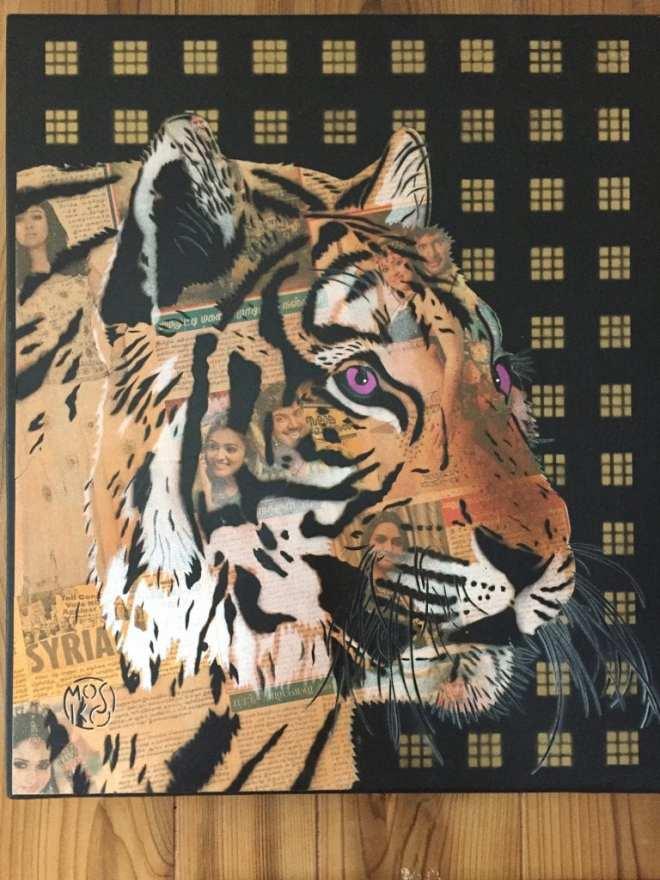 Mosko-tigre-visages