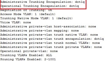 Interpret the output of various show and debug commands to