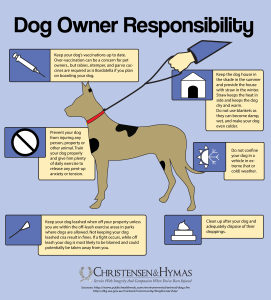 Dog Owner's Responsibility