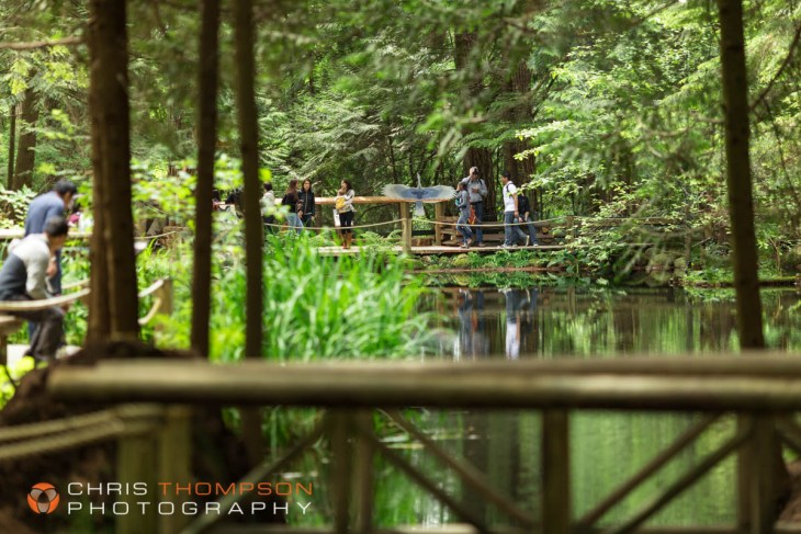 spokane-photography-chris-thompson-photographer-26