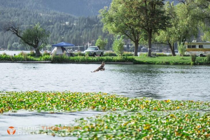 spokane-photographers-44