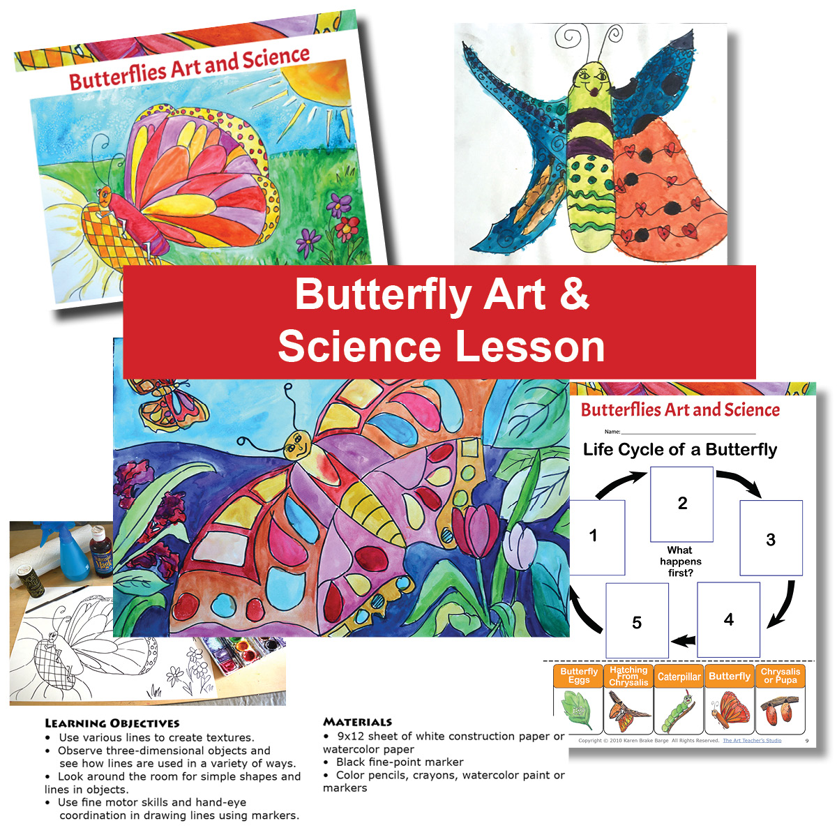 Bundled Butterfly Amp Caterpillar Drawing Painting Art