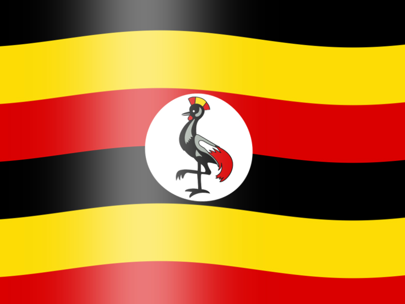 Update from Uganda