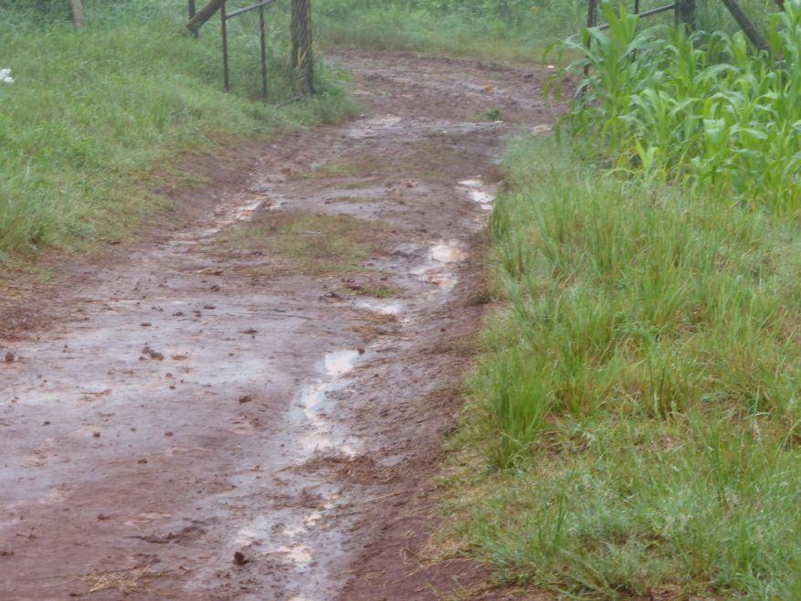 07 Cross 0058 Ngwenani Venda SA WEB