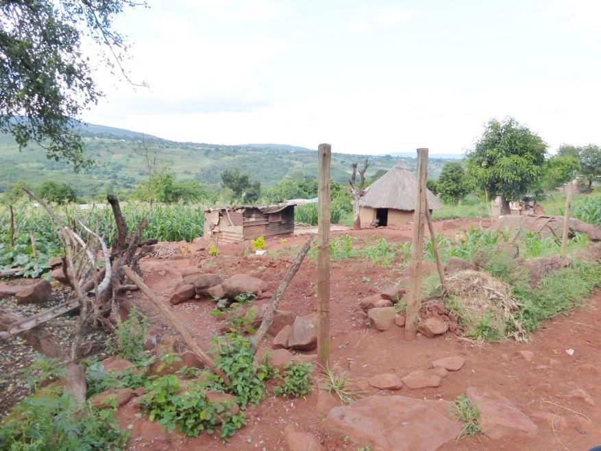 Cross 0057 Ngudza Venda SA WEB 05