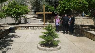 Carols Prayer Circle. Cedar tree from Lebanon in the fore ground