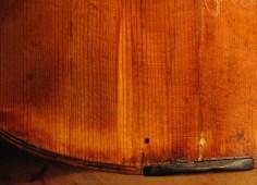 """Geigendecke, von innen durchgesetzter """"Patch"""", Retusche noch unfertig/ patch through violin front"""