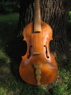 Violone in G