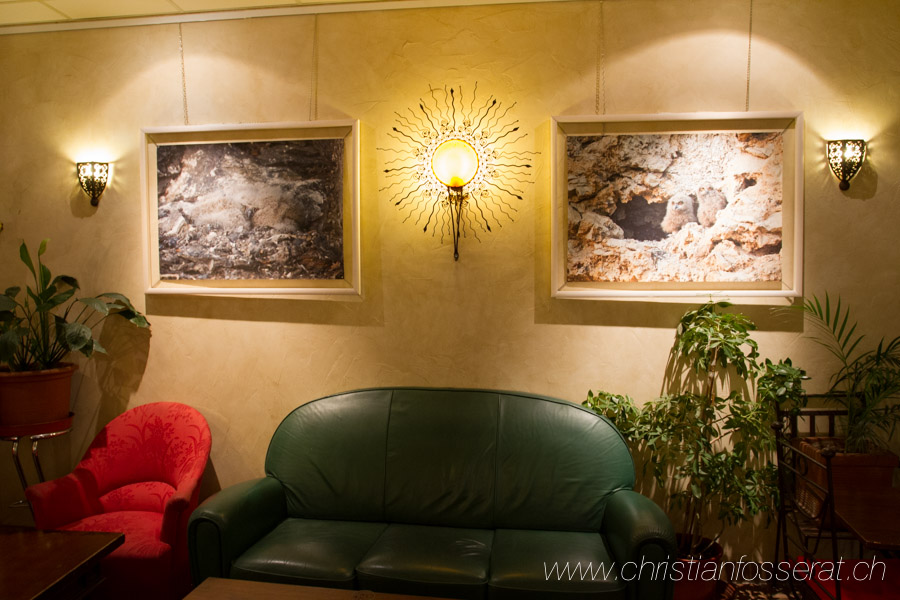 Exposition Grand-duc