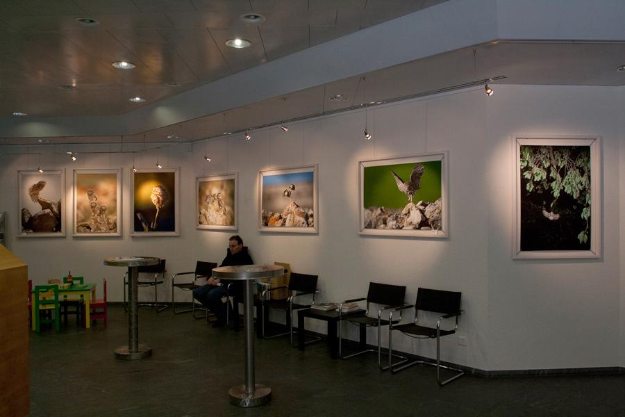 Exposition Raiffeisenbank à Burgdorf