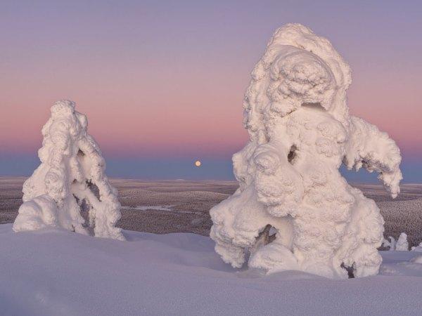 Monduntergang im Winter
