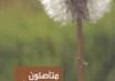 كتاب متاصلون في محبة الله - تاملات كتابية لمن يسيرون مسيرة التعافي و النضوج - تاليف ديل و جوانيتا ريان ترجمة د اوسم وصفي