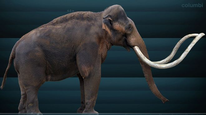 columbian_mammoth_by_serchio25