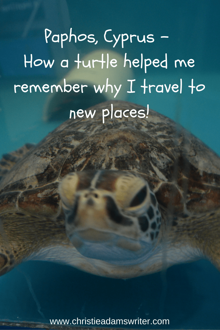 Paphos, Cyprus – How a Turtle Helped Me Remember Why I Travel to New Places!