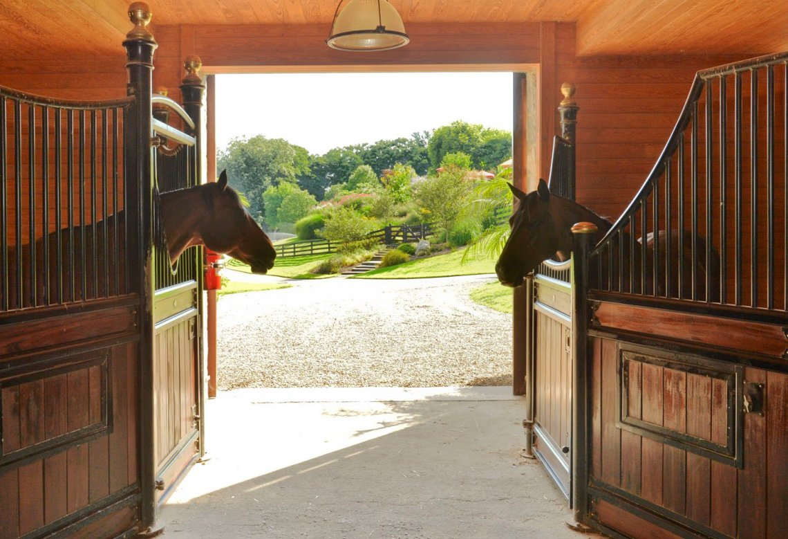 Equine Elegance: 8 World-Class Horse Farms - Christie's