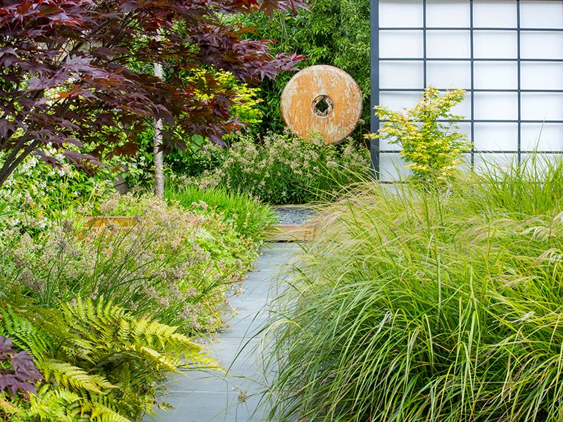 The view along a stone path to a wooden sculpture and trellis screen. Plants include fireglow and orange dream Japanese maples, pheasant's tail grass, Japanese shield fern, and snow rush.