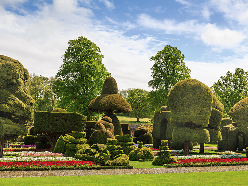 Levens Hall topiary gardens