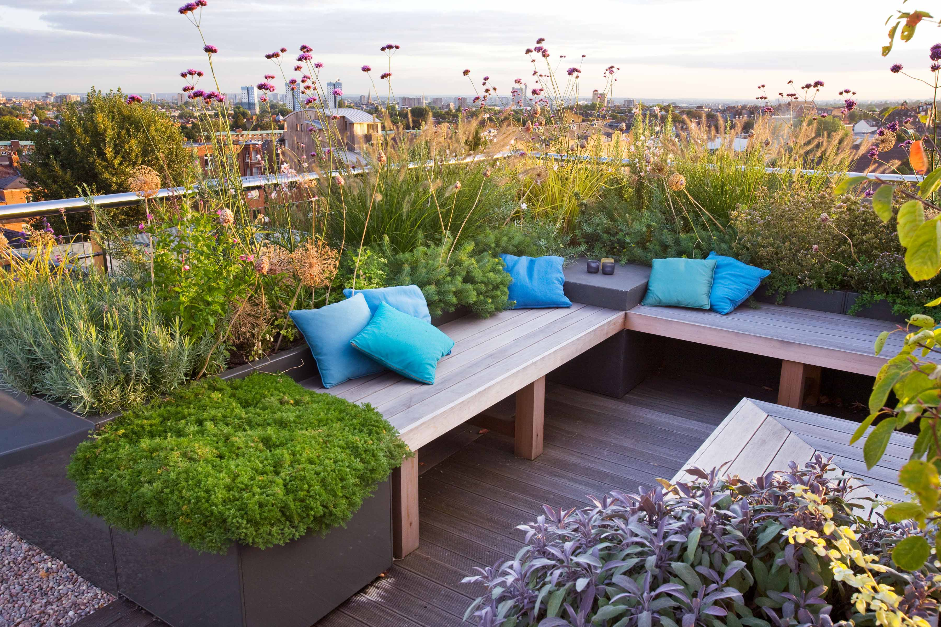 Rooftop seating and plants