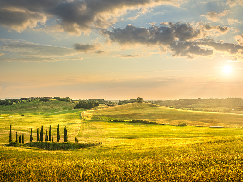 Sunset landscape in Maremma with rolling hills and cypress trees