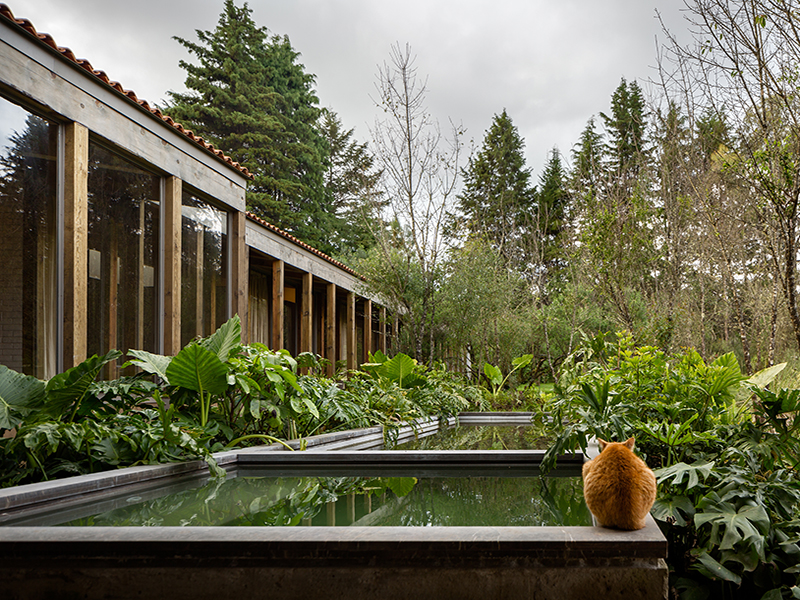 Exterior of Santana House surrounded by woods