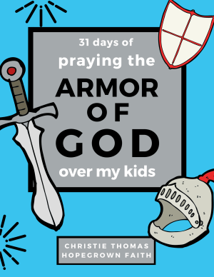 Armor of God prayer journal