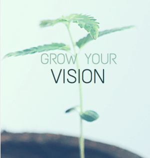 grow your vision for your family
