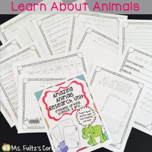 Amazing Animal Reports: Research is FUN!