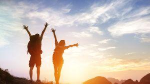Life Coaching 1 zu 1 – Online