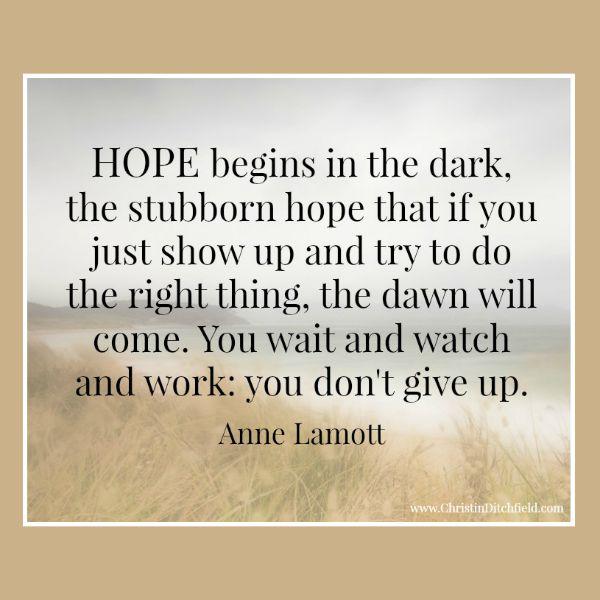 Hope Quote Anne Lamott Christin Ditchfield