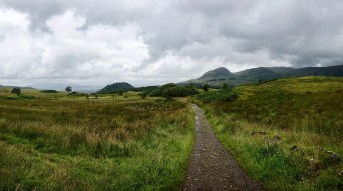 The West Highland Way trail as it passes through a green field