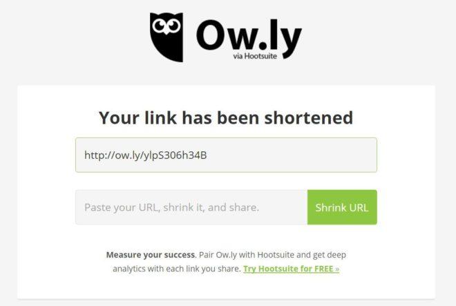 owly2