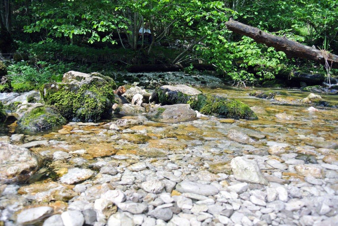 Wasserlochklamm Palfau Klammwanderung