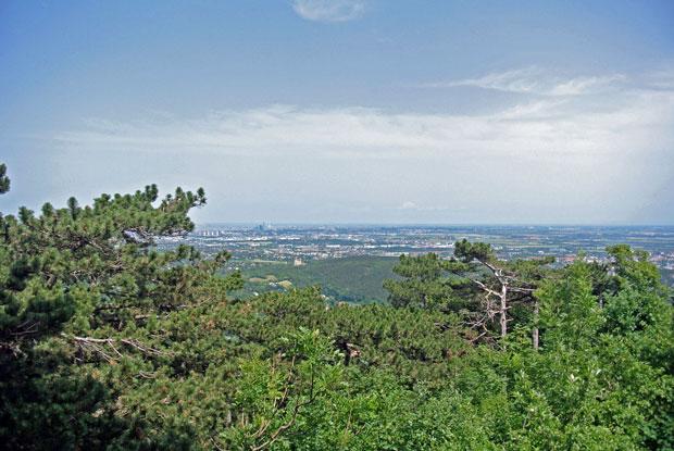 Blick vom Husarentempel auf Wien