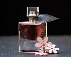 best perfume gifts christmas.co.uk