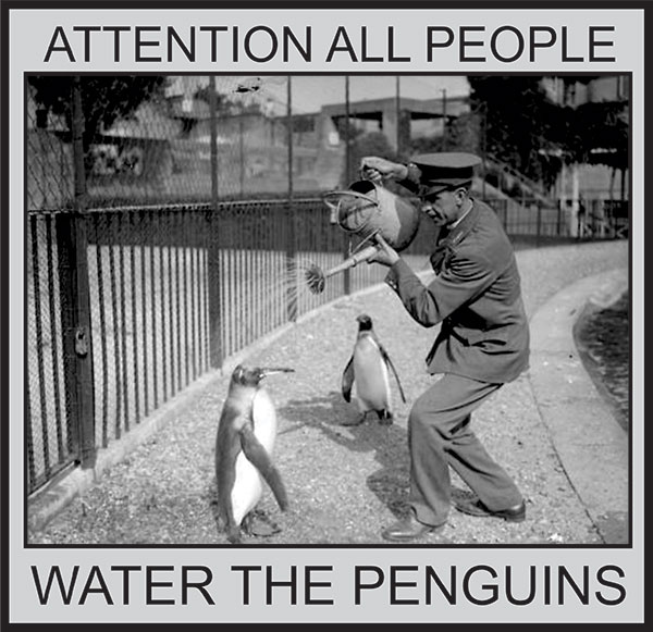 WATER-THE-PENGUIN
